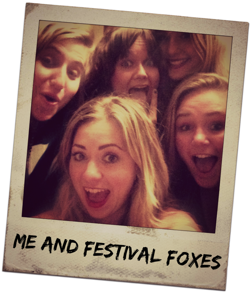 Festival Foxes
