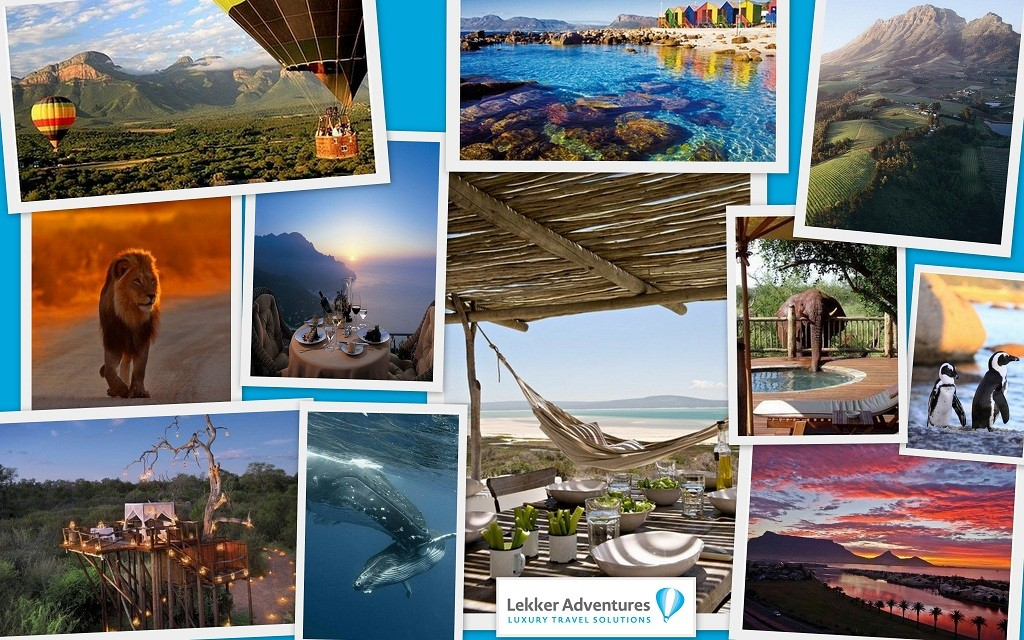 South Africa Honeymoons